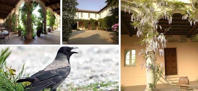 Barzizza Palace and the curious nickname of Ozzeresi
