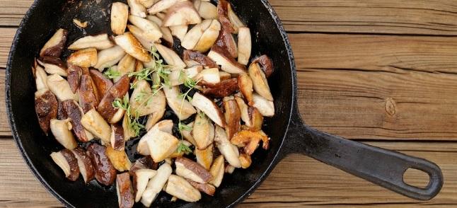 Motta Visconti: la Sagra del Fungo Porcino il 22, 23 e 24 settembre